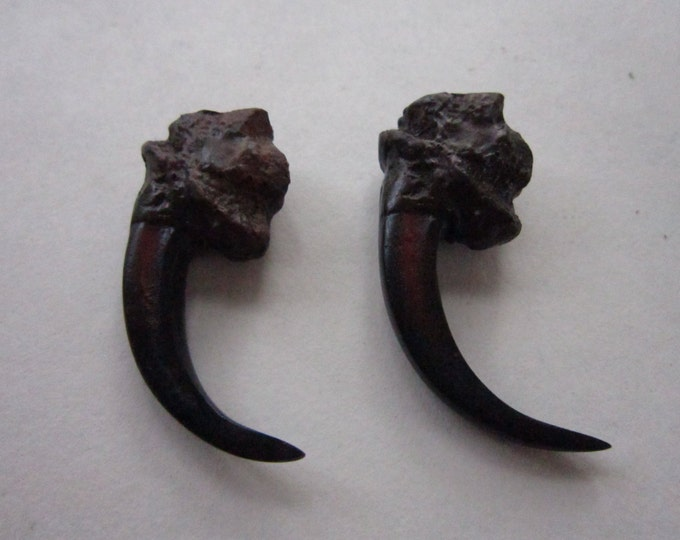 "2 Eagle Talon Eagle Claws  2"" Resin Replica Jewelry and Craft Supplies Tribal Crafts"