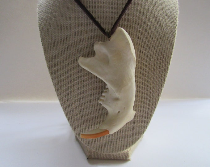 Beaver Jawbone Pendant Buckskin Leather Necklace Animal Bone Jewelry Statement Necklace N374