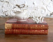 Vintage Burgundy Books, Set of Two Burgundy Books, Vintage Farmhouse Decor, Burgundy Book Stack, Books for Decor