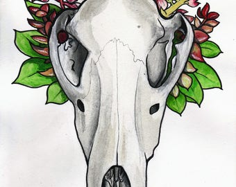Inktober 2017 Painting: Thylacine skull with flora