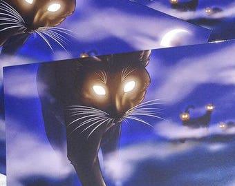 Beware of Cat 7x5 Prints
