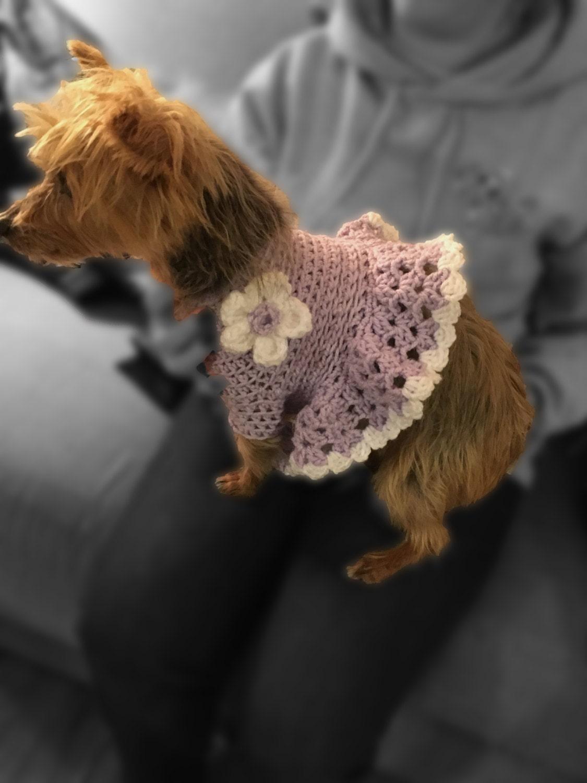 Hund Hund Kleid Pullover häkeln Hundepullover Welpe Dress