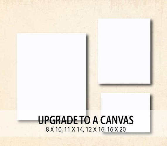 The First to Apologize is Bravest Family Wall Decal Vinyl Sticker Art Quote A61