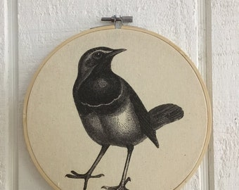 Vintage Bird print framed in embroidery hoop 3inch 6inch 8inch FREE SHIPPING