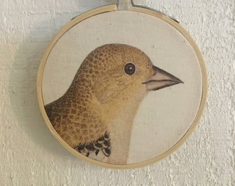 Goldfinch Bird Hoop Art Wall Decor Farmhouse Shabby Chic Cottage Available 3inch 6inch or 8inch hoop FREE SHIPPING