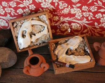 Dollhouse miniature find fossil