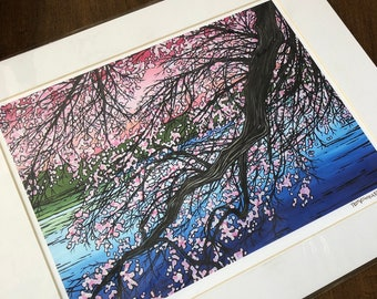 "11x14"" Matted Giclee Print of Cherry Blossoms by Tracy Levesque (print size is approximately 8x10"" inside 11x14"" mat)"