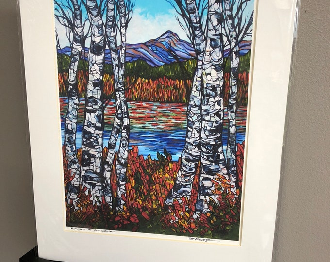 "11x14"" Matted Giclee Print of Birches at Chocorua by Tracy Levesque"