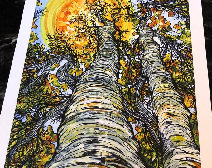 """Featured listing image: 11x14"""" Sunny Day Birches Giclee Fine Art Print (Unmatted) by Tracy Levesque"""