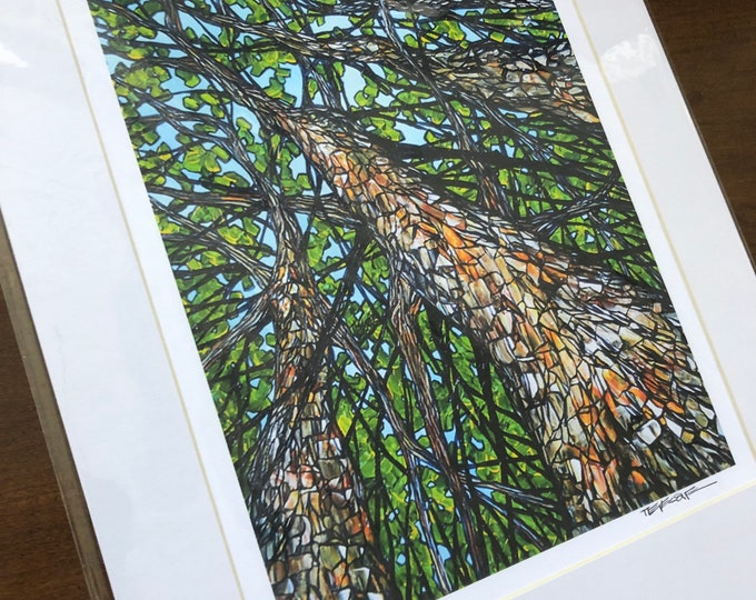 """11x14"""" Matted Giclee Print Up the Hickory Trees by Tracy Levesque (print size is approximately 8x10"""" inside 11x14"""" mat)"""
