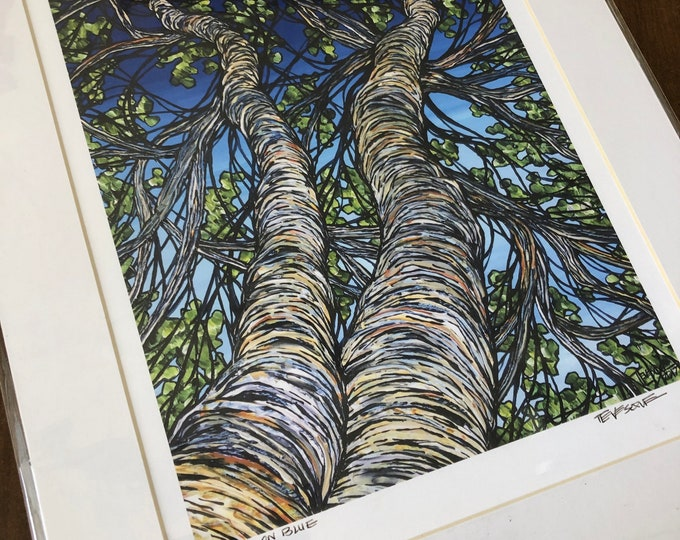 "Birches on Blue 11x14"" matted giclee print by Tracy Levesque (print size is approximately 8x10"" inside 11x14"" mat)"