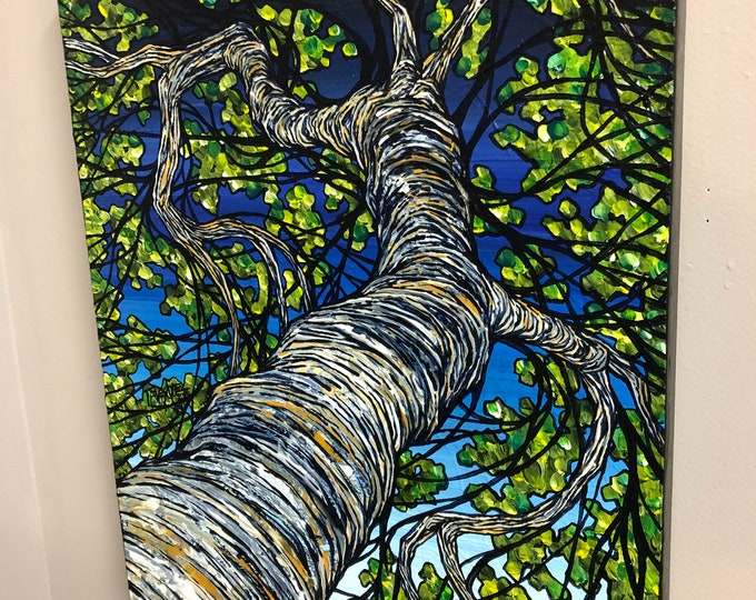 "Looking up the paper birch tree 16x20"" original acrylic painting by Tracy Levesque"
