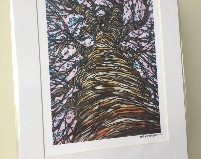 """11x14"""" Matted Print Looking Up the Cherry Blossom Tree by Tracy Levesque"""