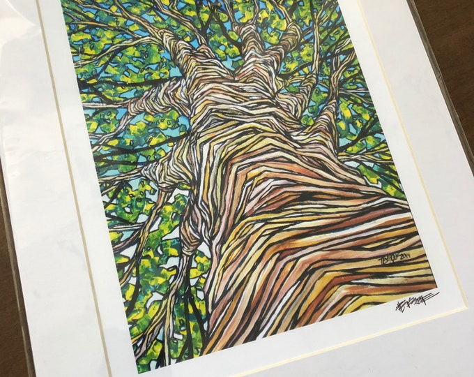 "Green Tree View 11x14"" matter giclee print by Tracy Levesque"