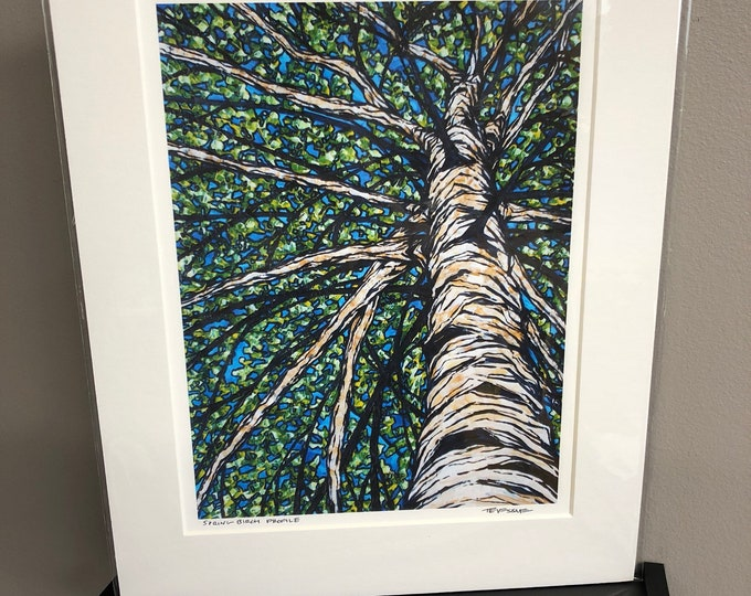 "11x14"" Matted giclee print of birch tree by Tracy Levesque"
