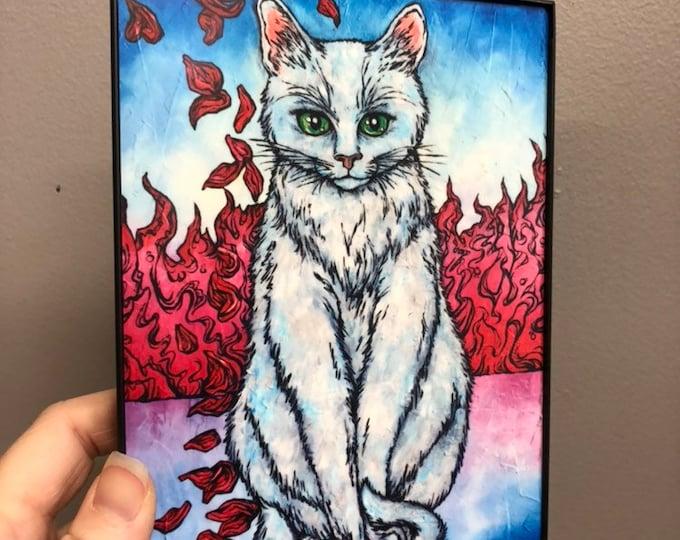 """White Cat 5x7"""" Framed Print on Aluminum"""