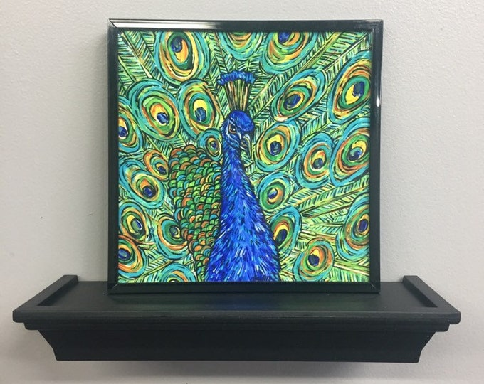 "Drummond Peacock 8x8"" aluminum print by Tracy Levesque"