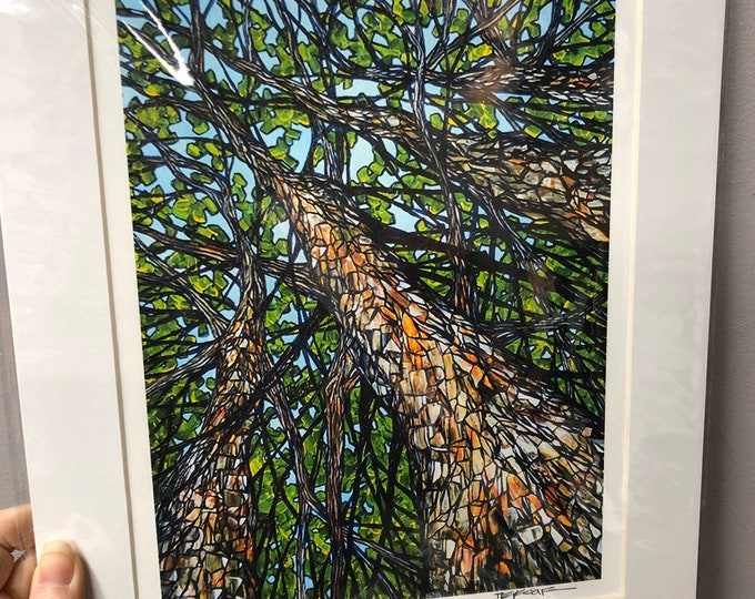 "11x14"" Matted Giclee Print Up the Hickory Trees by Tracy Levesque"