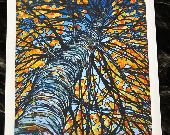 """Auburn Birch 11x14"""" unmatted Fine Art giclee print by Tracy Levesque"""