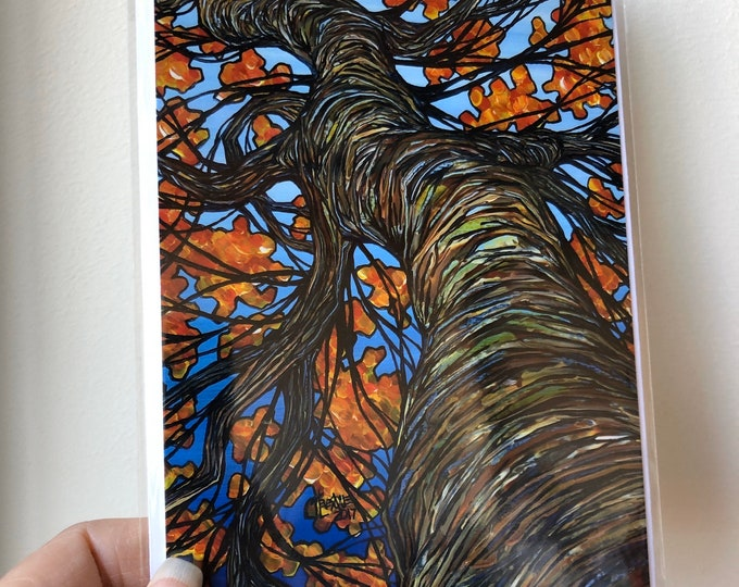 "5x7"" Looking up the autumn tree greeting card featuring artwork by Tracy Levesque"
