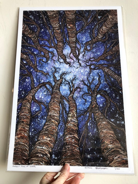 """12x18"""" Giclee print of Forest Full of Stars - Looking up at the trees by Tracy Levesque"""