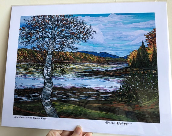"11x14"" Giclee print of Lone Birch Tree on the Jordan River Acadia National Park Maine by Tracy Levesque"
