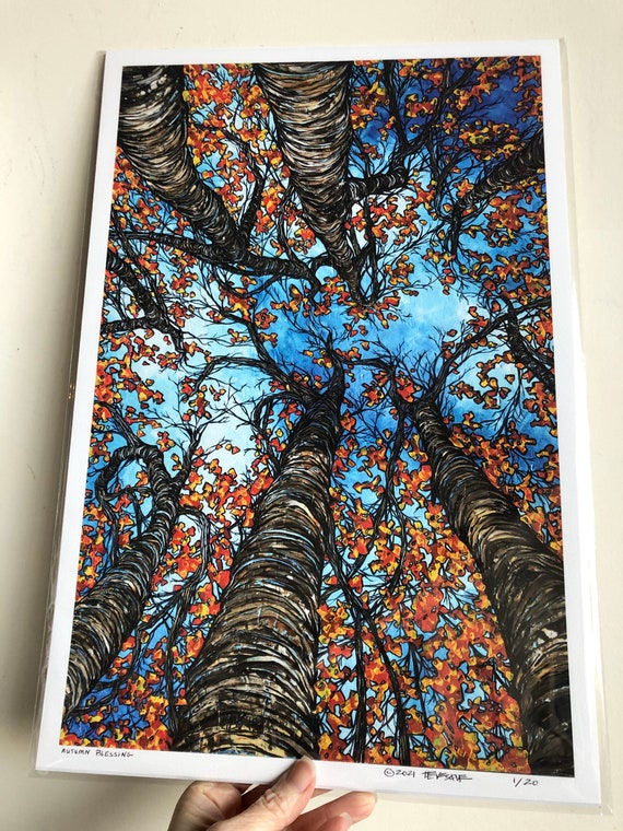 """12x18"""" Giclee Fine Art print of Autumn Blessing looking up into the fall trees by Tracy Levesque"""