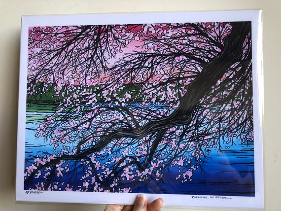 "11x14"" Unmated Giclee Print Blossoms in Spring Cherry Blossoms by Tracy Levesque"