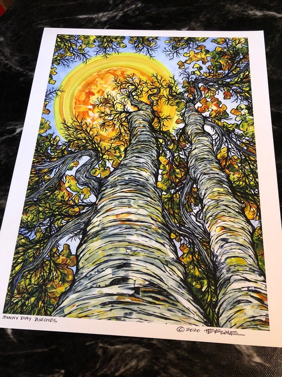 """11x14"""" Sunny Day Birches Giclee Fine Art Print (Unmatted) by Tracy Levesque"""