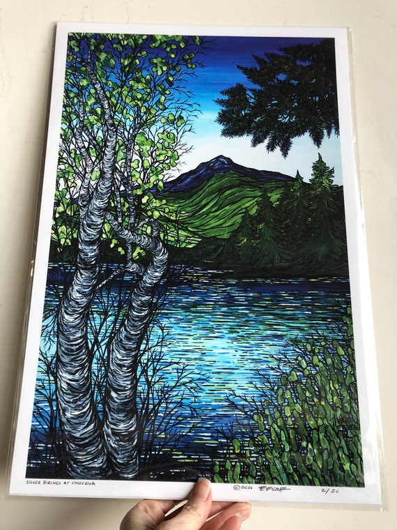 """12x18"""" Giclee print of Silver Birches at Mount Chocorua White Mountains New Hampshire by Tracy Levesque"""