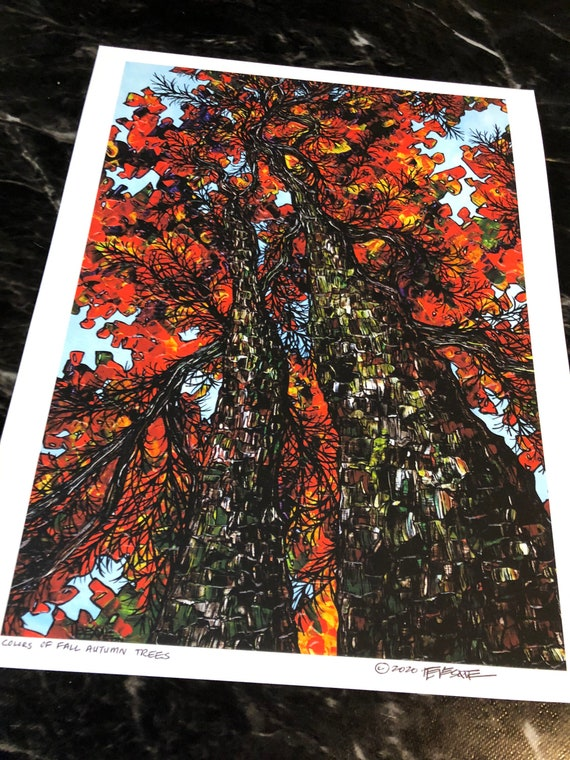 """11x14"""" Colors of Fall Autumn Trees Giclee fine art print (unmatted) by Tracy Levesque"""