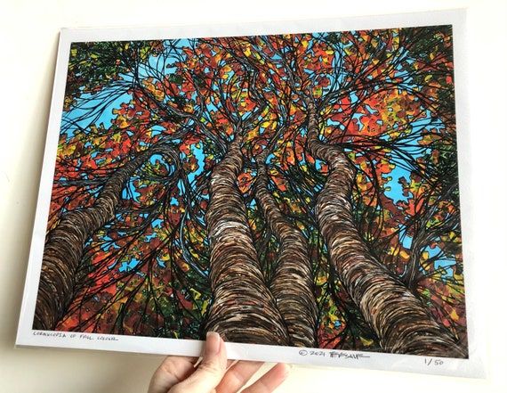 """11x14"""" Giclee print of Cornucopia of Fall Color New England Fall Foliage Trees by Tracy Levesque"""