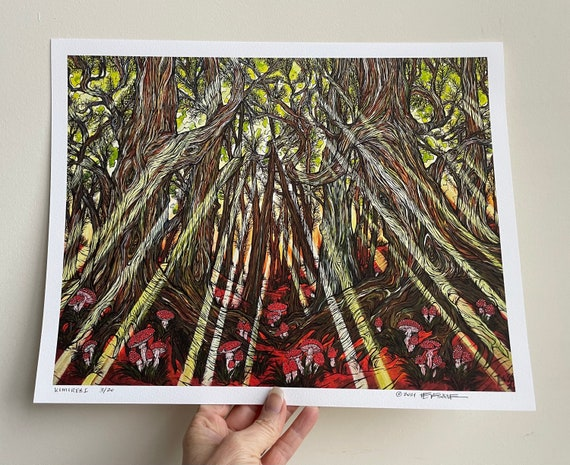 """11x14"""" Giclee print of Komorebi Light through the trees by Tracy Levesque"""
