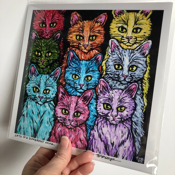 "Cats of a different color 8x8"" photographic print by Tracy Levesque"