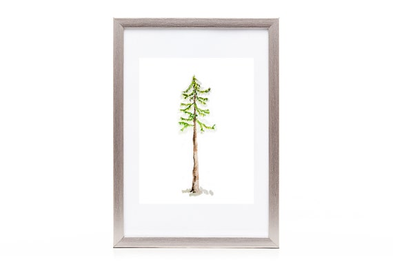 simple art watercolor evergreen tree print fir tree etsy