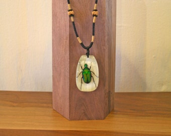 Iridescent Glow in the Dark INSECT Choker Necklace