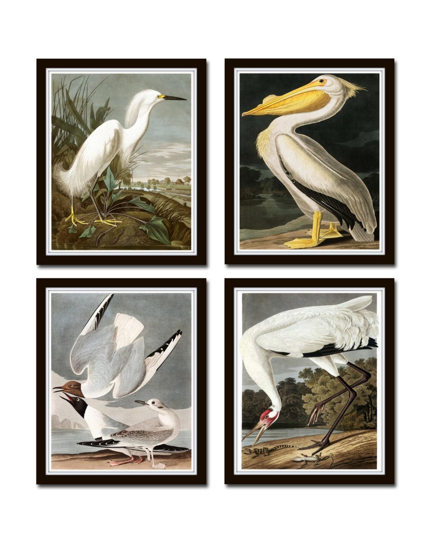 All 5 Prints. A5 Existential Birds Art Print Set