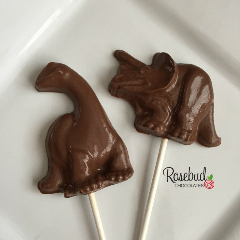 10 DINOSAUR Chocolate Assorted Lollipop Favors Land Before Time Birthday Party Candy