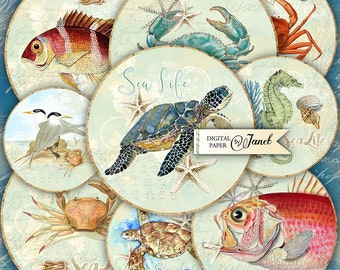 Sea Life - 2.5 inch circles - set of 12 - digital collage sheet - pocket mirrors, tags, scrapbooking, cupcake toppers