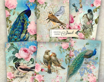 BIRD Vintage Cards - digital collage sheet - set of 6 - Printable Download