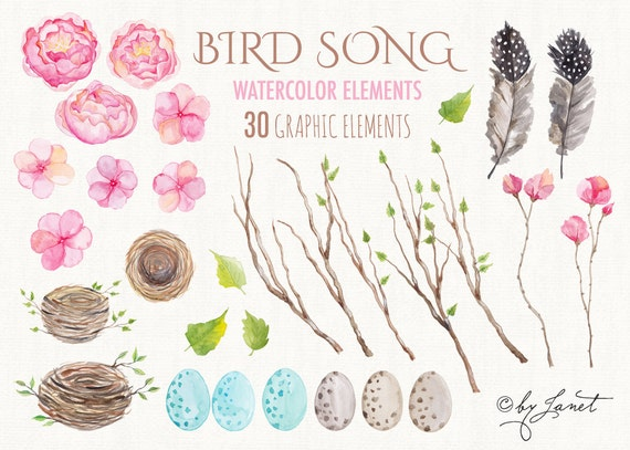 https://www.etsy.com/uk/listing/248213767/bird-song-collection-floral-watercolor?ref=shop_home_active_37