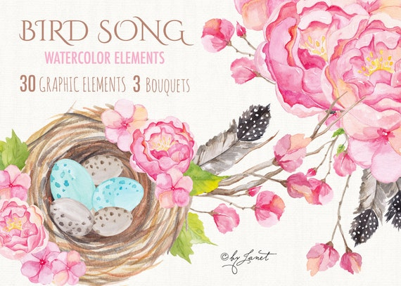 https://www.etsy.com/uk/listing/248213767/bird-song-collection-floral-watercolor?ref=shop_home_active_18