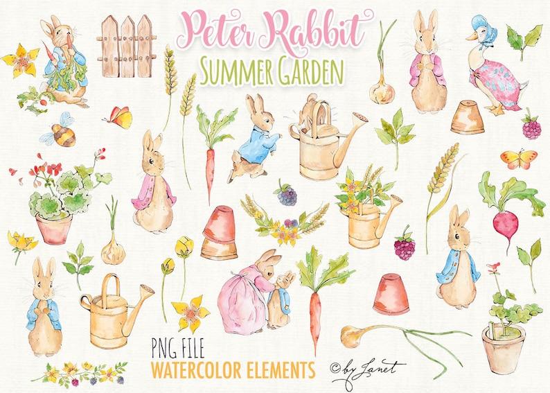 Peter Rabbit  Summer Garden  art clipart  Illustration  image 2