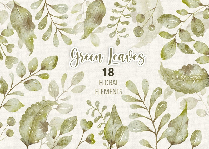 Green Leaves Collection  18 Floral Watercolor Elements  PNG image 0