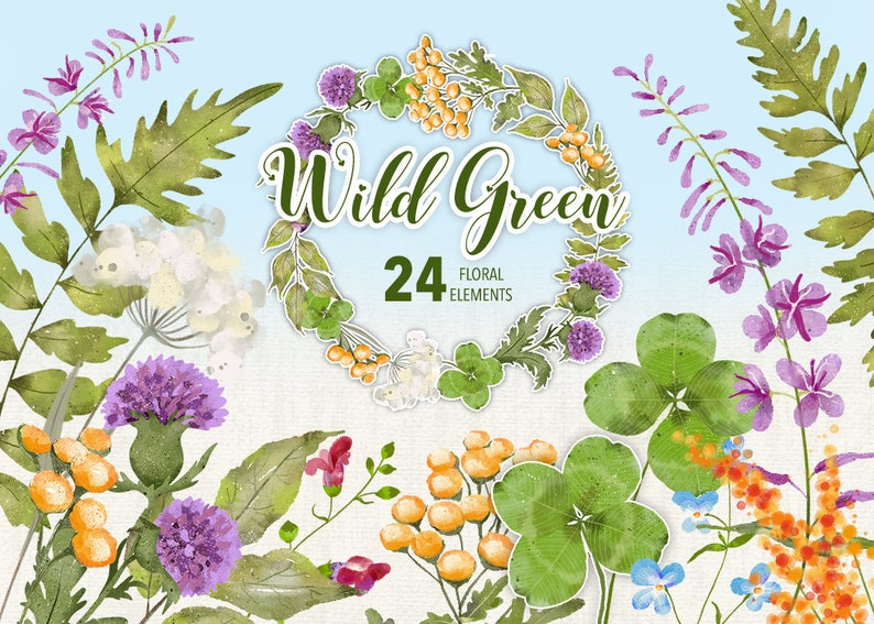 Wild Green Collection  24 Floral Watercolor Elements  PNG zdjęcie 0