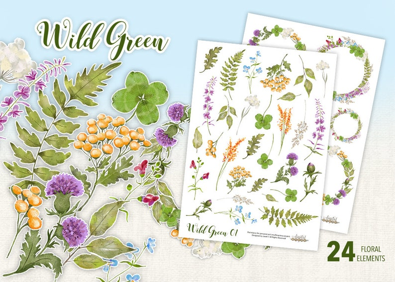 Wild Green Collection  24 Floral Watercolor Elements  PNG image 1
