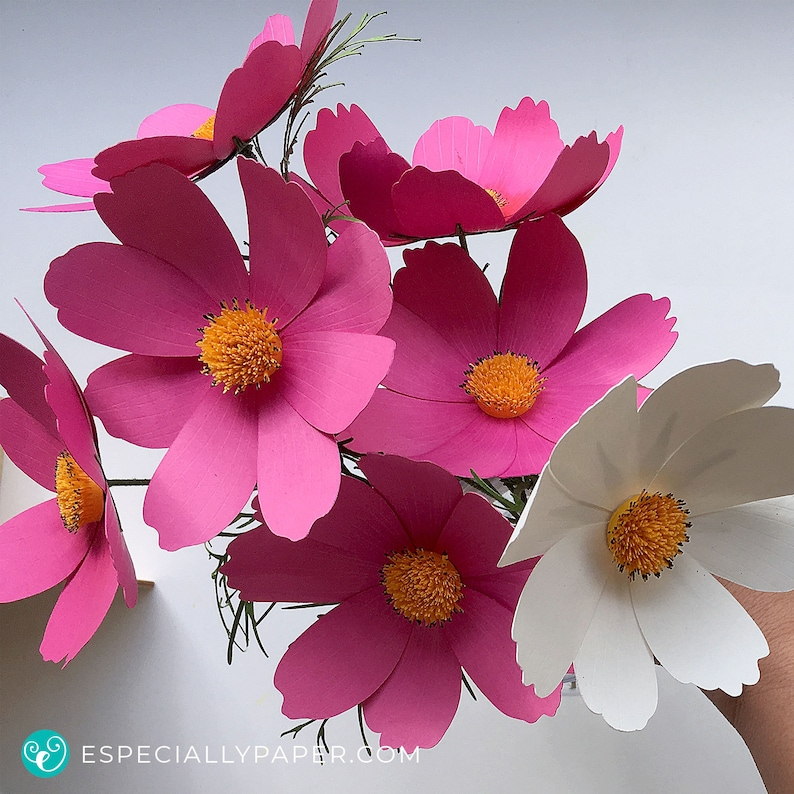 Cosmos 3d Paper Flower Template For Cricut Silhouette Cutting Machines Svg Dxf