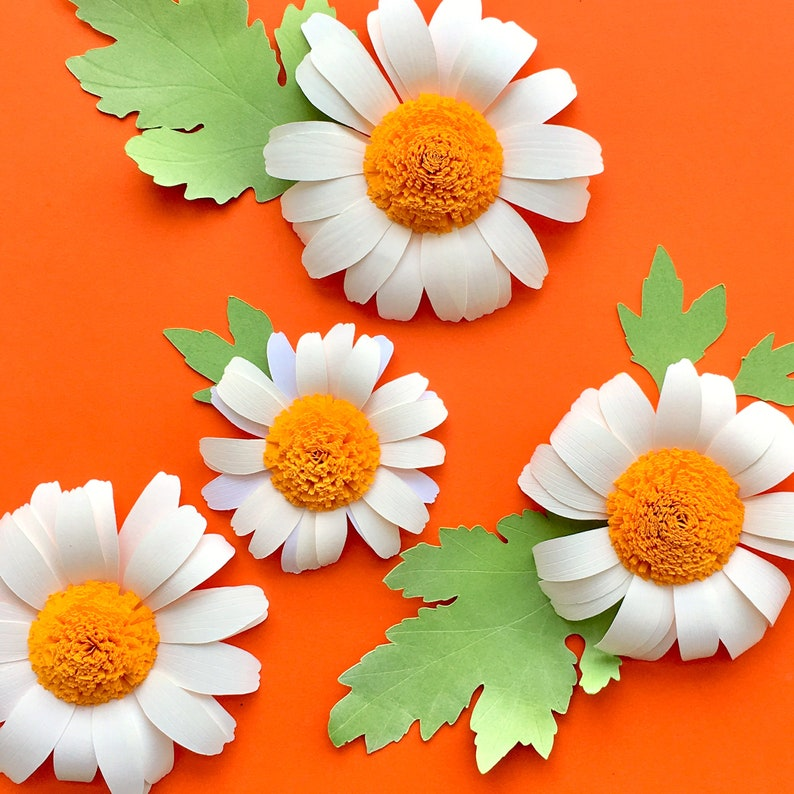 Paper Daisy Template Paper Flower Svg For Cricut And Silhouette Cutting Machines