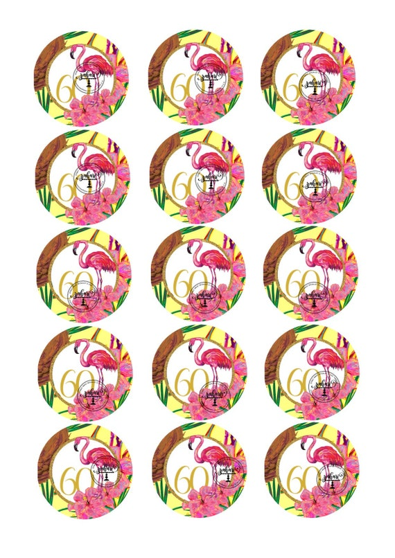 2 Inch Icing Rounds Bluey Edible Toppers 15