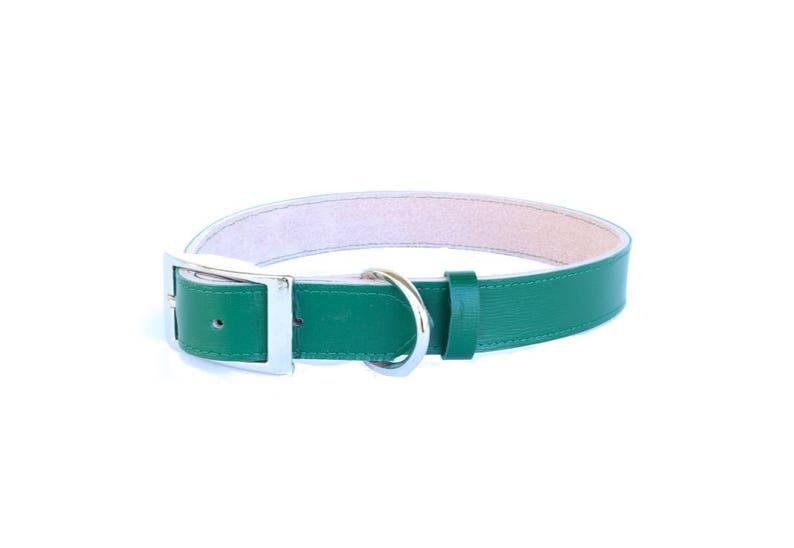 Dog Collar  Leather  Christmas Green image 0